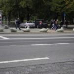 Diese Tauben sorgen dafür, dass Tallinns Autos auf den Straßen bleiben.