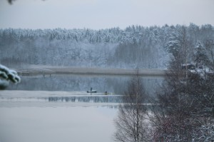 winter verkleinert